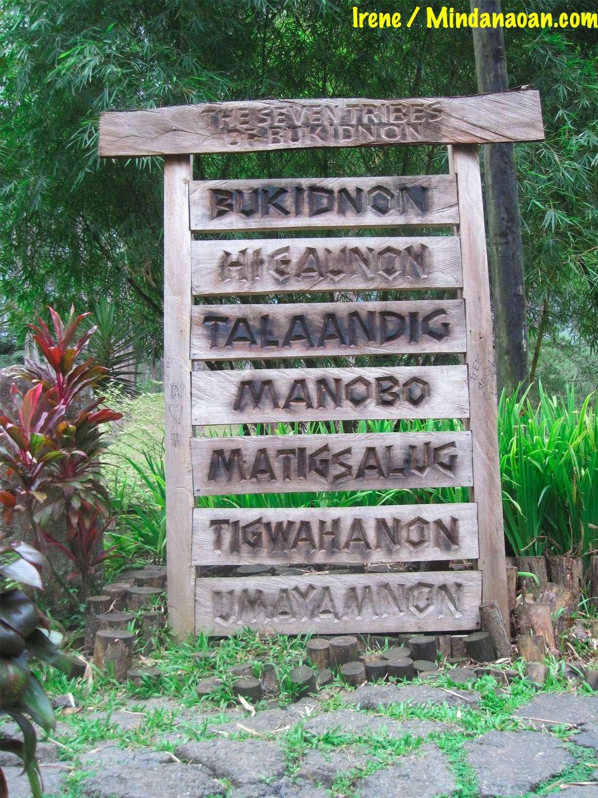 bukidnon-kaamulan-tribes