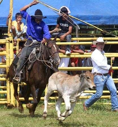 kaamulan-2014-rodeo