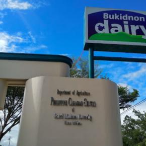 """Villar hits PH carabao center, dairy program; blames for malnutrition and """"kabobohan ng mga bata"""""""