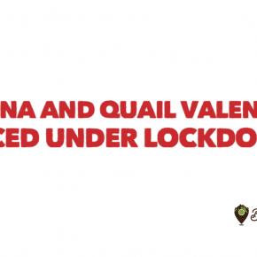Manna and Quail Valencia restaurant, compound on lockdown